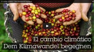 videos_klimawandel
