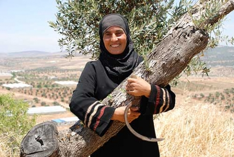 Oliven, Öl, Holz und Seife – Olivenbaumprodukte aus Palästina