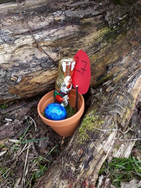 Der Osterhase war wieder im Pflanzgarten des Gartenbauvereins
