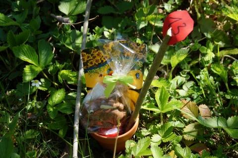 Osternester-Suchen im Pflanzgarten des Gartenbauvereins